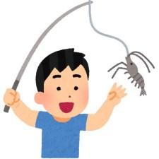 昼とは違う注意点も。今が旬のテナガエビを今度は夜釣りで釣ってきた。