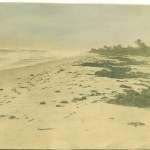 Image of our beach, circa 1912-1917, discovered in a discarded photo album full of coastal Palm Beach County photographs.