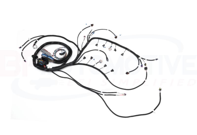 1997-2006 DBC LS1 Standalone Harness with 4L80e Transmission
