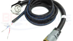 Dbc Ls1 Standalone Harness With 4l60e Transmission
