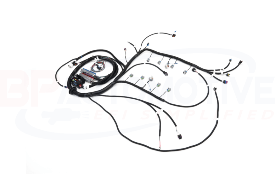 1999-2002 DBC LS1/Vortec Standalone Harness with 4L60e