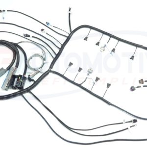 Ls1 Swap Wiring Harness LS1 Swap Gas Tank Wiring Diagram