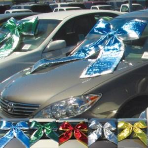 Shiny Car Bows