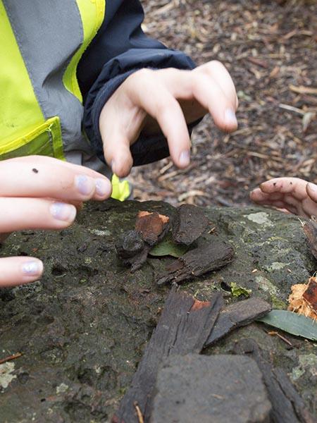 Children building homes for millipedes Batman Park Kindergarten bush kinder