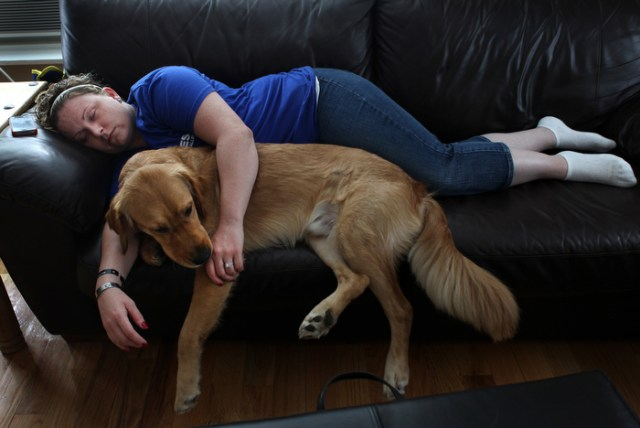 Josh, a service dog trained to help with Post Traumatic Stress Disorder, licks the hand of Natasha Young-Alicea, a Marine Corp Veteran, after she returned from working at the Vet Center with a migraine. Josh was named after a fallen Navy SEAL and helps Natasha to cope with life.