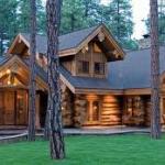 Maison en bois : une construction écologique