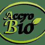 L'huile d'argan : l'alliée de vos cheveux