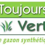 Toujours vert : Entretien de gazon synthétique et artificiel