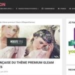 WP Traduction: vos thèmes et plugins WordPress en français