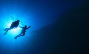 SpotMyDive : guide sur la plongée sous marine