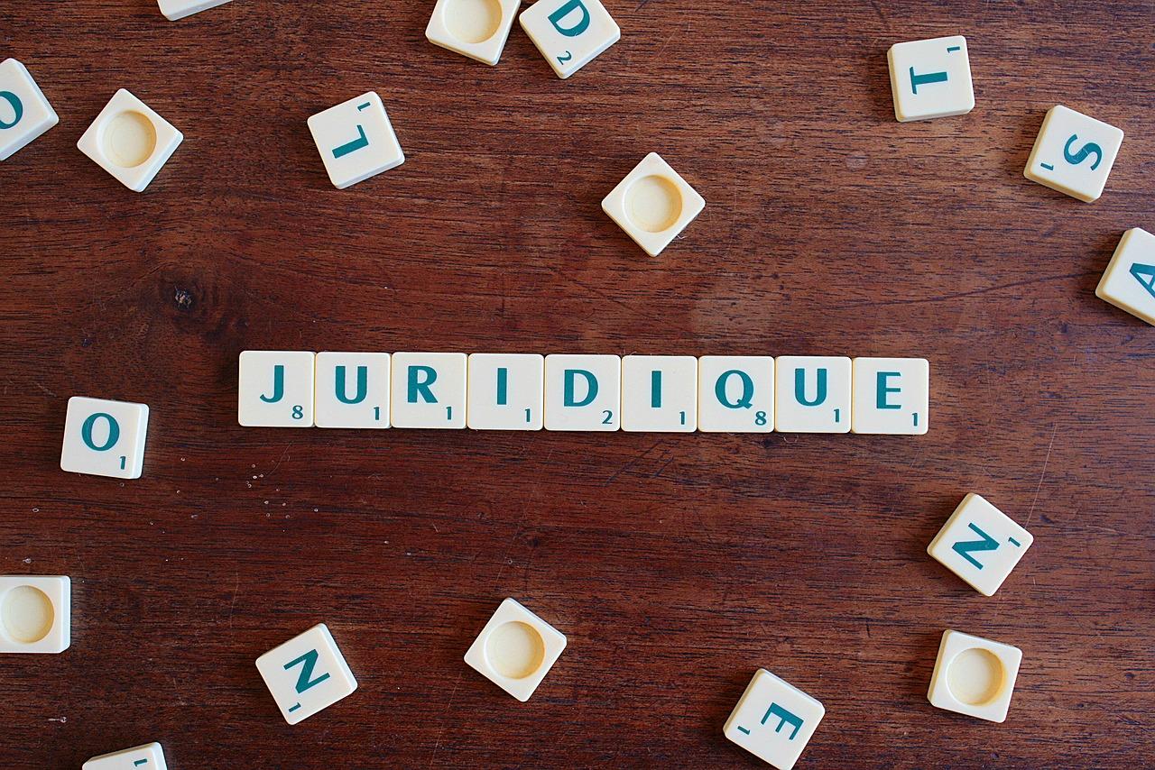 Avocats-juristes : immersion au coeur de l'univers juridique