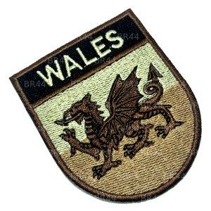 BP0190ET 04 Bandeira País Gales Bordada passar ferro/costura
