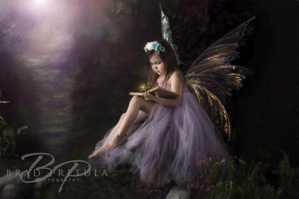 Studio Forest Fairy