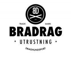 BraDragBIG_skalad