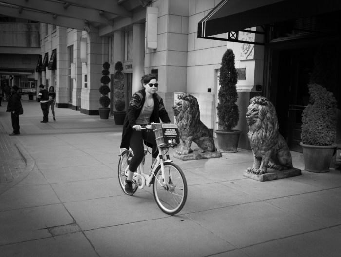 Feb 24th: Bicyclist
