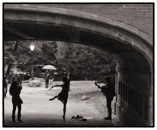 Nov 4: Central Park, NYC