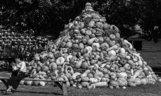Oct. 13th: Pile of Pumpkins