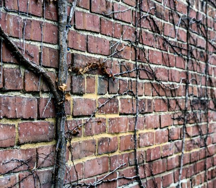 January 30th: Brick Wall