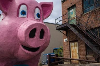 March 9: Big Pig
