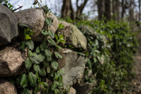 April 3: Stone Wall