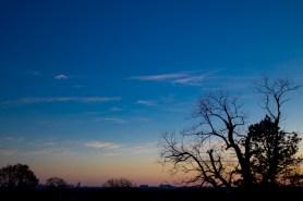 Jan 17: Indy Skyline