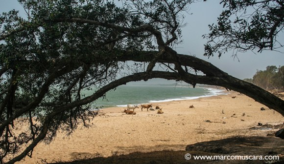 Kartong Beach, The Gambia, by Marco Muscarà, www.marcomuscara.com