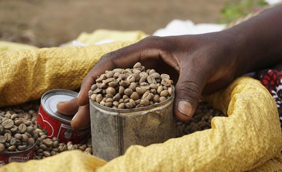 Coffee Diego Suarez market Madagascar by Nicole Motteux
