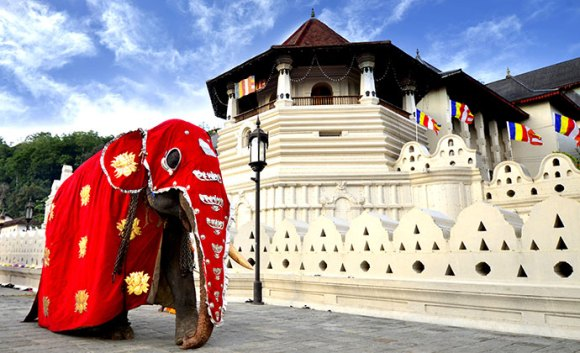 Elephant Temple of the Tooth Kandy Sri LAnka by claire Shutterstock