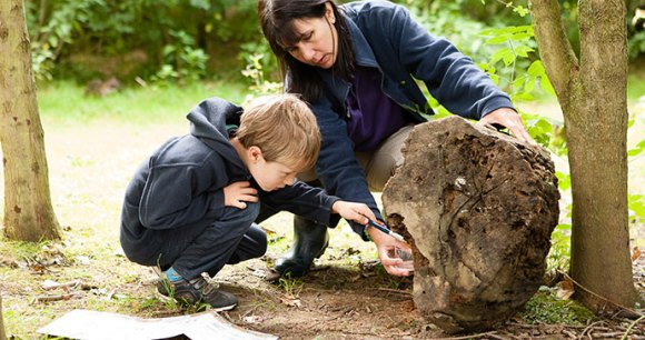 Bug hunting at the Shropshire Hills Discovery Centre © Shropshire Hills Discovery Centre