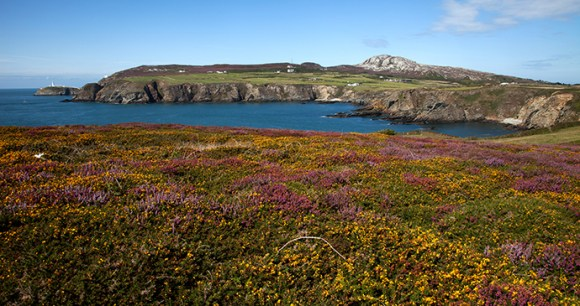 Holyhead, small hills by Gail Johnson, Shutterstock