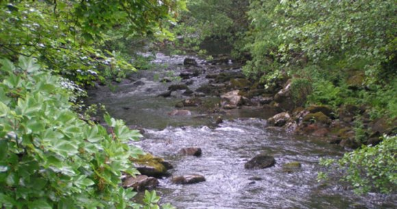 River Tavy, South Devon by Rob Purvis, Wikimedia Commons best wild swimming spots