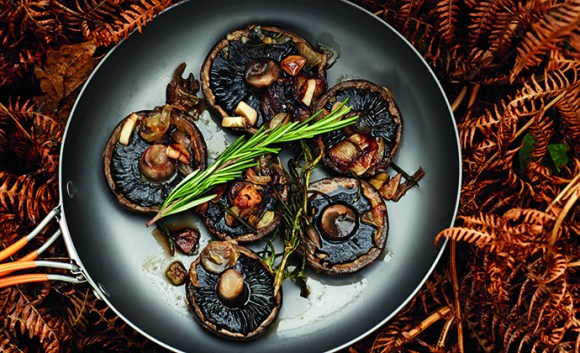 Rosemary and garlic mushrooms camping recipe The Wilderness Cookbook by Liz Seabrook