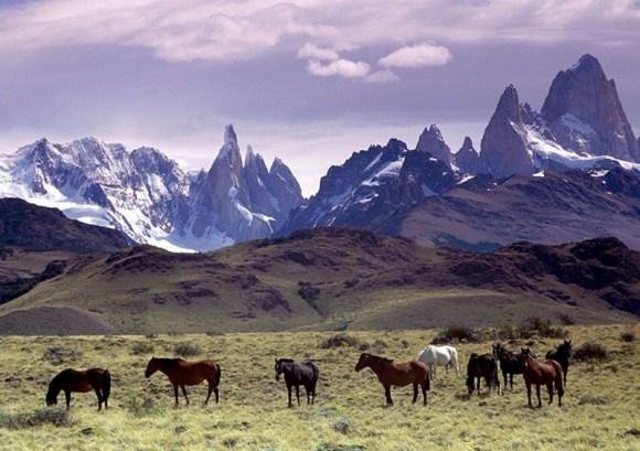 Mount FitzRoy, Patagonia, Argentina by Annalisa Parisi, Wikipedia