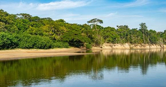 Rupununi River Guyana by Gail Johnson, Shutterstock