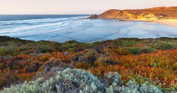 Coast Alentejo Portugal by by Dmitry Kornilov Shutterstock