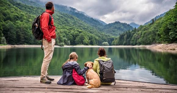 lake Kidding Around by Zivica Kerkez Shutterstock
