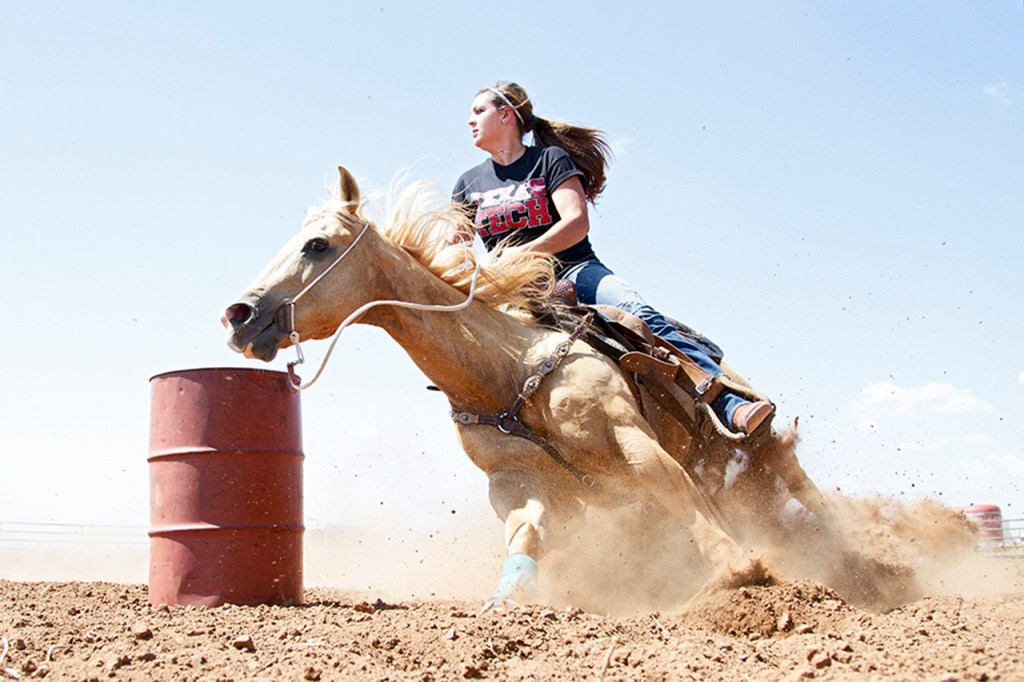 Audra Hodgson, from Azle, rides her horse, Shorty, around a barrel Sept. 3, 2013, at a stable southeast of Lubbock, Texas. Hodgson is one of many Texas Tech students that has brought horses to Lubbock.
