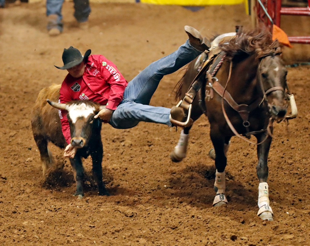 Jace Melvin (371) dives on the steer during the ABC Pro Rodeo, Friday, March 30, 2018, at Municipal Coliseum in Lubbock, Texas. [Brad Tollefson/A-J Media]