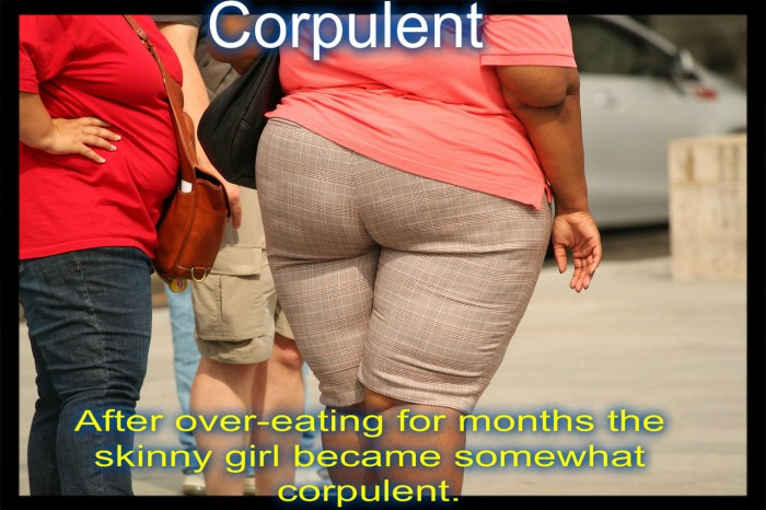 After over-eating for months the skinny girl became corpulent.