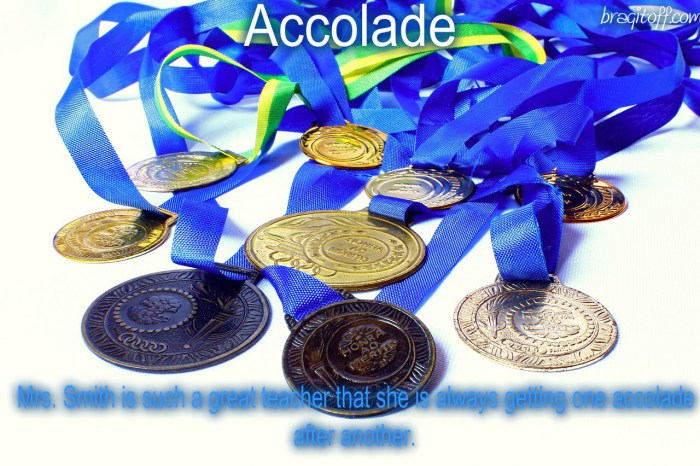 accolades medals lots of medals visual meaning definition dictionary sentence bragitoff