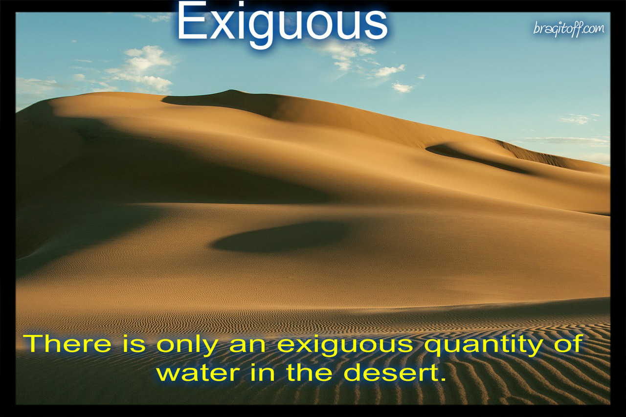 exiguous visual dictionary meaning definition