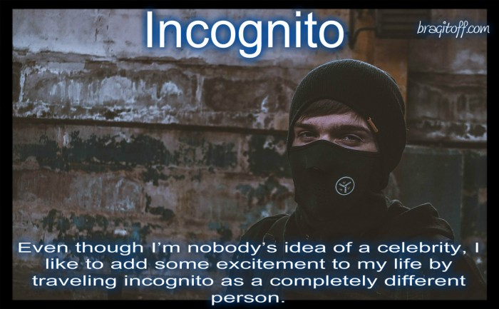 image sentence: Even though I'm nobody's idea of a celebrity, I like to add some excitement to my life by traveling incognito as a completely different person.