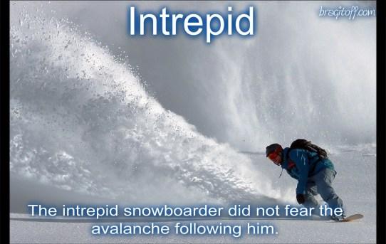 intrepid courageous brave chutzpah