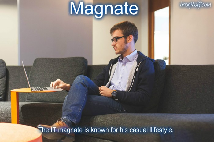 define magnate visual definition image sentence example meaning