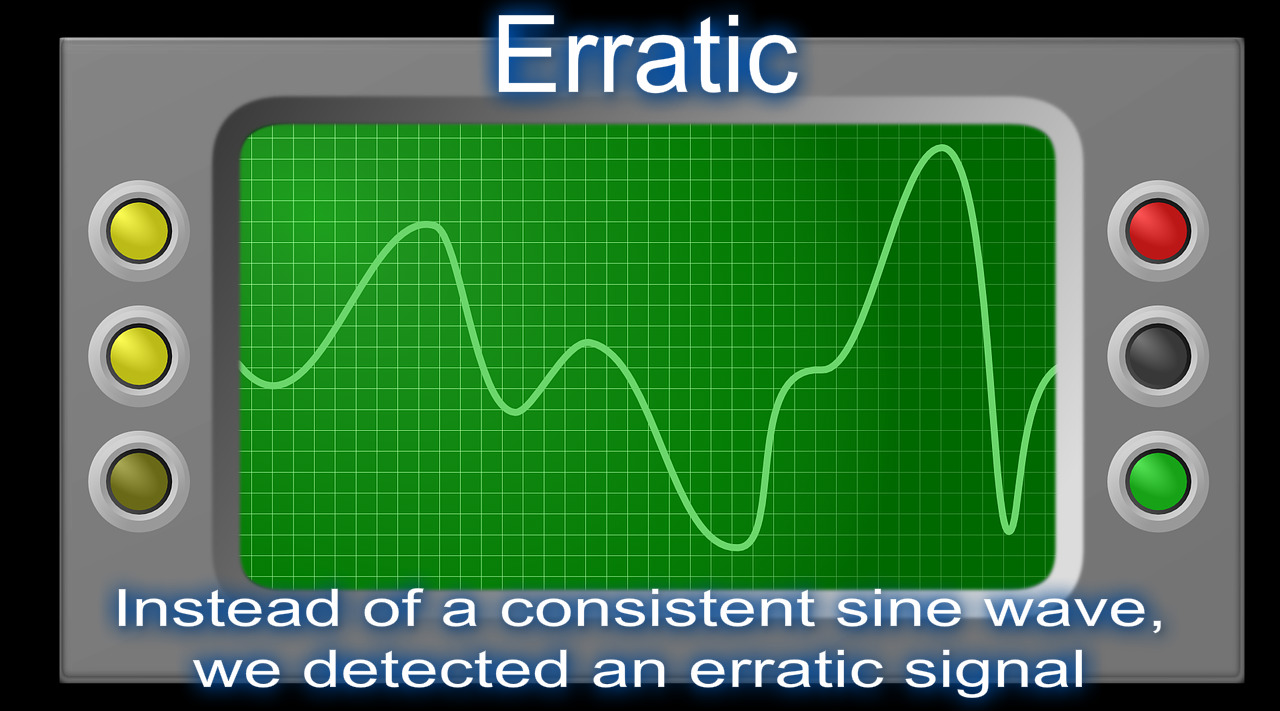erratic definition visual dictionary meaning image