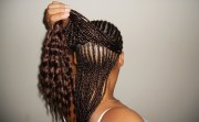 1l two-layer braids design