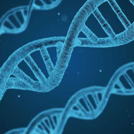 柏金遜症的成因、遺傳與預防