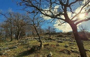 colle-corvia-parco-comunale