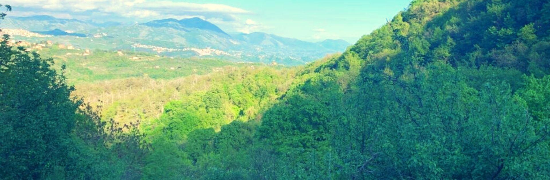 escursione-castagneto-capranica-prenestina