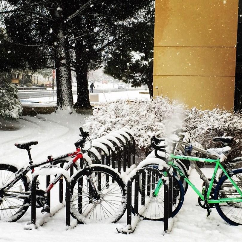 snow-las-cruces1